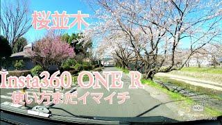 桜並木 ハイエースでドライブ Insta360 ONE R 4K広角モジュール